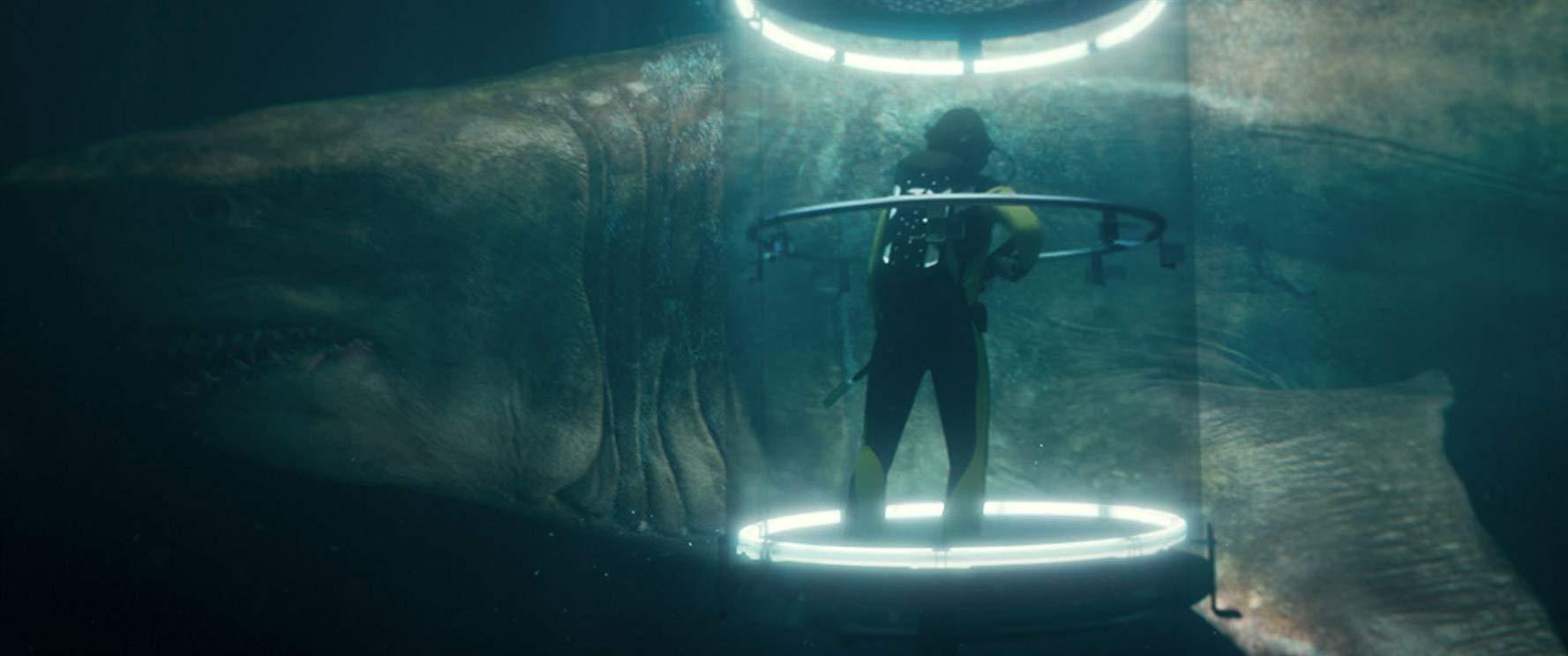 巨齒鯊_3